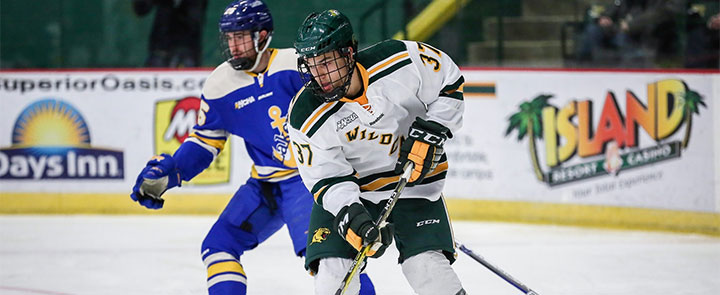 WCHA: 2018-19 Team Preview Capsules